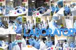 http://primanexus.com.my/services/laboratory-services